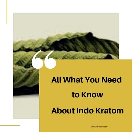 All What You Need To Know About Indo Kratom - Read Before