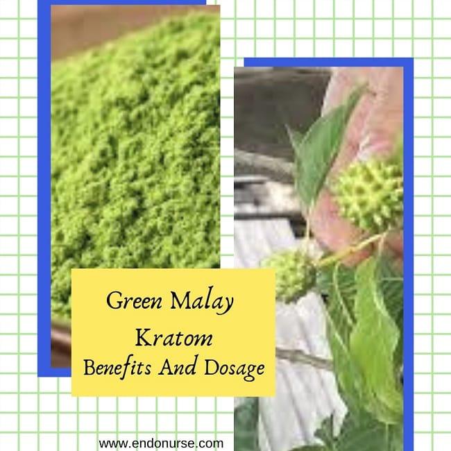 green malay kratom benefits