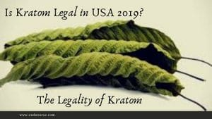 Is Kratom Legal in USA 2019? The Legality of Kratom