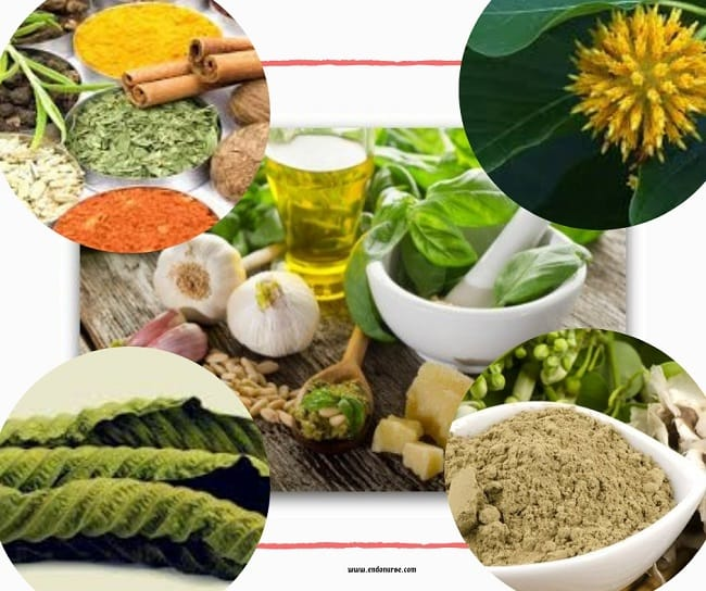 Where To Buy Kratom Near Me and Locally
