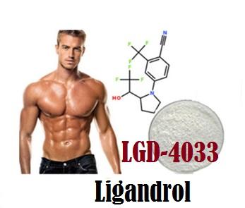 LGD-4033