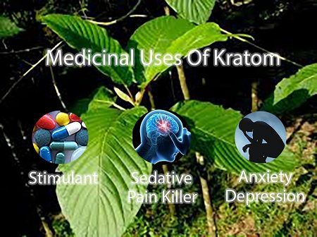 medicinal uses of kratom