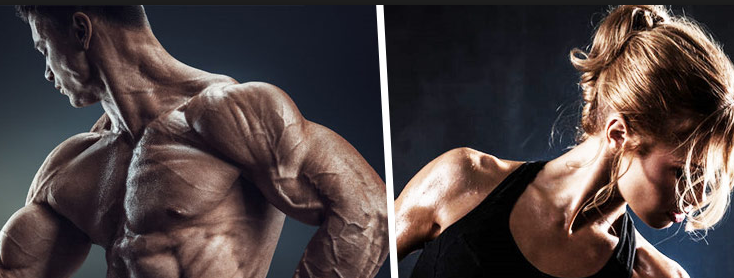 Image result for SARMs for sale